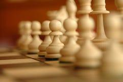 Gage d'échecs Photographie stock libre de droits