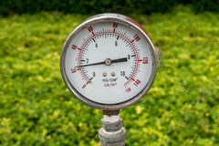 Gage. Pressure Gage on green blurred background stock photo