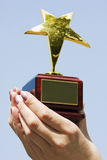 Gagnant de récompense Photographie stock