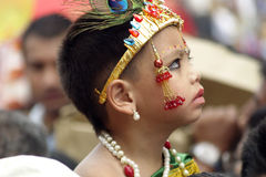 Gai Jatra (il festival delle mucche) Fotografie Stock Libere da Diritti
