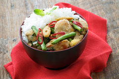 Gai Pad Kra Paw with rice , Thailand food Royalty Free Stock Image