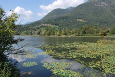 Gaiano lake Royalty Free Stock Photography