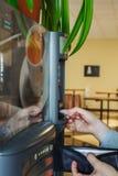 Gaieté au travail - une tasse de café chaud images libres de droits