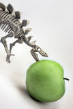 Gaining weight. On a white background dinosaur eats green fruit Royalty Free Stock Images