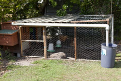 Gaiola de galinha Imagens de Stock Royalty Free