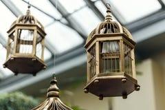 Gaiola de pássaro antiga Fotos de Stock Royalty Free