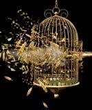 Gaiola de pássaro de explosão Fotos de Stock Royalty Free