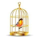 Gaiola de pássaro dourada com pássaro para dentro Fotos de Stock Royalty Free
