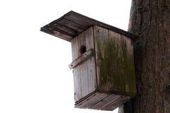 Gaiola de pássaro isolada Foto de Stock