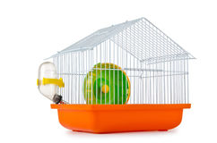 Gaiola de pássaro no branco Imagem de Stock