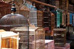 Gaiola de pássaro no mercado do pássaro Imagem de Stock