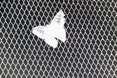 Gaiola do iro da pensão da borboleta Fotografia de Stock