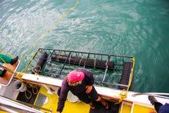 Gaiola do mergulho do tubarão na água Imagem de Stock