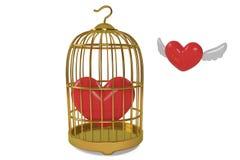 Gaiola e amor de pássaro do ouro Imagem de Stock