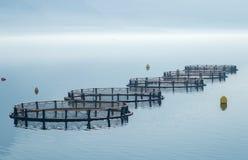 Gaiolas para a piscicultura imagens de stock royalty free