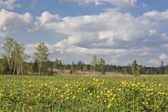 Gaissach amarra en primavera Foto de archivo