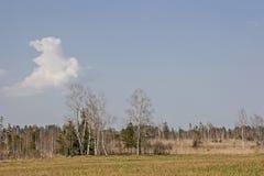 Gaissach amarra en primavera Imagen de archivo