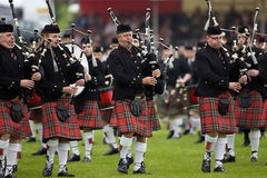 Gaiteiros no Cowal que recolhe em Scotland Imagens de Stock