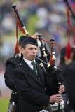 Gaitero en el Cowal que recolecta en Escocia Imagen de archivo
