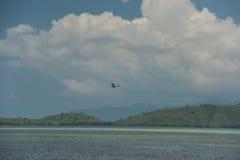 Gaivota branca que voa sobre o mar azul nos montes da costa de Singapura Imagem de Stock Royalty Free