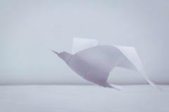 Gaivota da liberdade do origâmi Fotografia de Stock