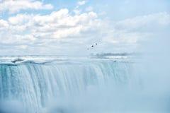 Gaivota de Niagara Falls - mar que sobe na névoa pesada Imagem de Stock Royalty Free