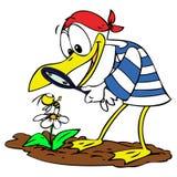 Gaivota e abelha dos desenhos animados Imagem de Stock Royalty Free