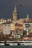 Gaivota e torre de Galata fotografia de stock