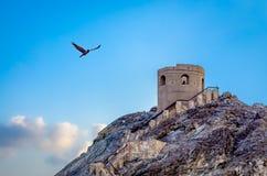Gaivota e a torre de vigia Imagens de Stock Royalty Free