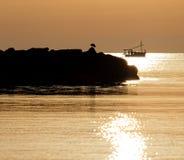 Gaivota em rochas com o barco de pesca no fundo banhado na luz dourada bonita do nascer do sol, bona de cala, mallorca, sapin imagem de stock royalty free