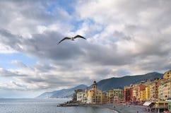 A gaivota imergiu em um voo do céu nebuloso sobre a igreja de Santa Maria em Camogli, Liguria, Itália fotos de stock