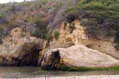Gaivota, penhascos Geological, praia, e oceano Imagem de Stock Royalty Free
