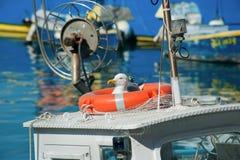 A gaivota senta-se em um bote de salvamento em um navio no porto foto de stock