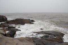 Gaivotas e mar no inverno Imagem de Stock Royalty Free
