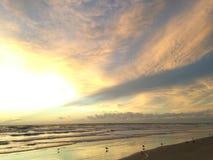 Gaivotas na praia de Oceano Atlântico durante o alvorecer com raios crepusculares Imagem de Stock