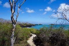 Galápagos, Floreana Island beach, trail. Travel Tourism Ecuador scenic royalty free stock images