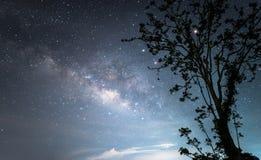 A galáxia da Via Látea sobre o céu noturno estrelado fotos de stock