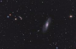 Galáxia M106 espiral nos bastões Venati fotos de stock royalty free