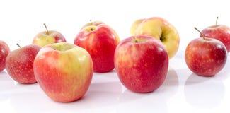 Φρέσκα βασιλικά μήλα gala Στοκ εικόνα με δικαίωμα ελεύθερης χρήσης