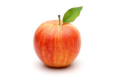 Gala Apple Royalty Free Stock Photography