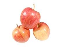 Gala Apple Stock Afbeeldingen