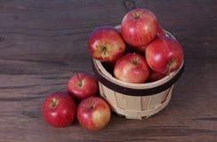 Gala apple Stock Photography