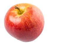 Gala Apple real III Fotografia de Stock Royalty Free