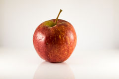Gala apple. Gala red apple isolated on white background Stock Photos