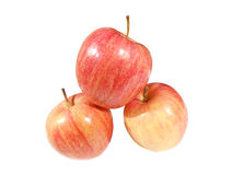 gala apple Stock Images