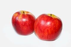 Gala Apple rossa deliziosa nel fondo bianco Immagini Stock Libere da Diritti