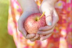 Gala Apple Royalty Free Stock Photo