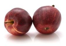 Gala Apples image libre de droits