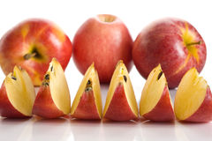 Gala Apples Imagem de Stock Royalty Free