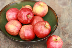 Gala Apples in a bowl Royalty Free Stock Photos